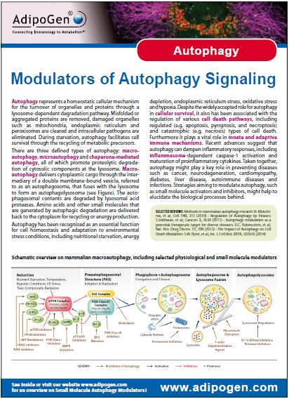 Autophagy Modulators Product Flyer 2014