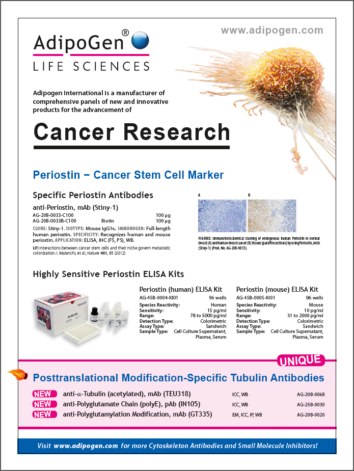 Cancer Research Flyer 2015