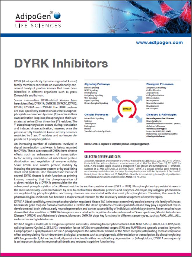 DYRK Inhibitors Flyer 2017