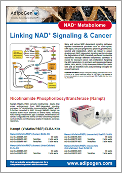 NAD Metabolome Flyer