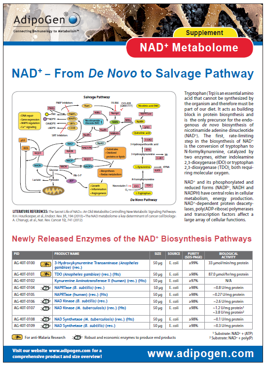 NAD Metabolome Supplement Flyer