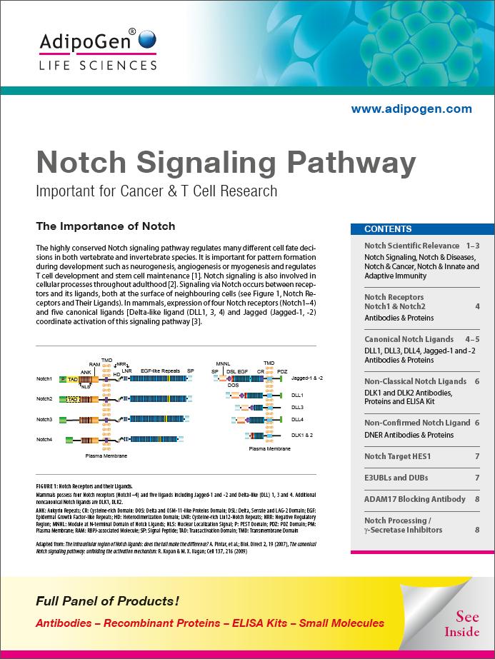 Notch Signaling Pathway Brochure 2017