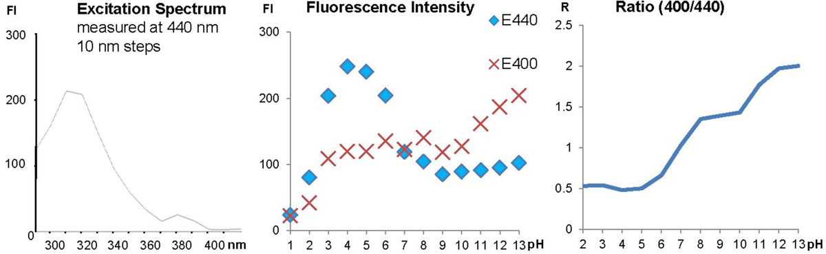 Fluorescence properties of LysoGlow84, showing excitation spectrum (left), fluorescence measured at 400nm and 440nm with different pH values (middle), and ratio of intensities at emission wavelength 400nm and 440nm dependent of the pH (right).