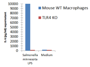Macrophages from wild-type (WT) TLR4 expressing or TLR4 deficient (TLR4 KO) mice were stimulated with 1μg/ml TLRpure™ <i>S. minnesota</i> S-LPS. Cell culture supernatants were analysed by ELISA for IL-6 after 24h. Optimal concentrations required for activation depend upon bacterial strain and chemotype (R- or S-) LPS, cell species (murine, human, others), cell culture conditions (FCS concentration), sampling time and cytokine. Recommended range for S-type (wild-type) LPS: 0.01-1.0μg/ml.