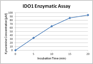 Activity assay figure of IDO (human) (rec.) (His) (highly active) (AG-40B-0161). IDO (human) has been tested with a protocol using catalase (see our website). The specific activity has been calculated to be >100'000U/mg protein with L-tryptophan as substrate (one unit is defined as the amount of enzyme that produces 1nmol of N-formylkynurenine (NFK) per hour).