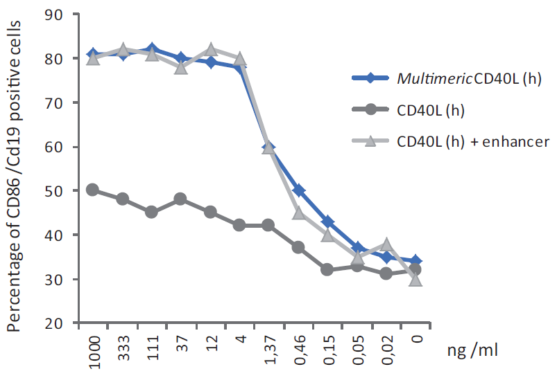 CD40L (human) (multimeric) (rec.) (Prod. No. AG-40B-0010) does not need an enhancer to induce B cells activation. <br /> <b>Method:</b> PBL cells  were incubated in 96-well plates (2x10<sup>5</sup> cells/well in 100μl RPMI supplemented with 10% FCS) for 24 hours at 37°C with the indicated concentration of CD40L (human) (multimeric) (rec.) or CD40L (h) in the presence and absence of 1μg/ml Enhancer (Prod. No AG-35B-0001). Cells were washed with PBS and stained with 2 μl each CD86-PE and CD19-FITC in 50μl FACS buffer (PBS, 5% fetal calf serum, 0.02% azide) for 20 min. at 4°C in the dark. After two washes in FACS buffer, samples were then analyzed by flow cytometry.